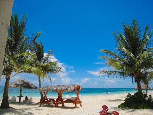 Grand Bahama Island Bahamas
