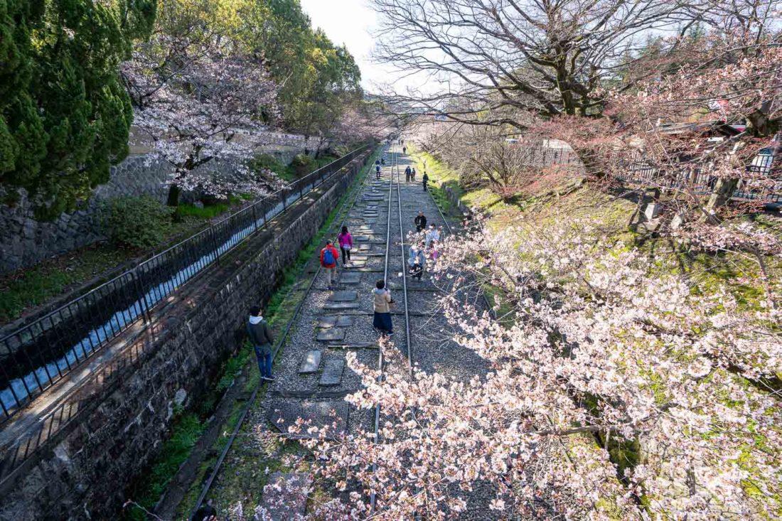 Keage Incline, un lieu très apprécié des sakura à Kyoto
