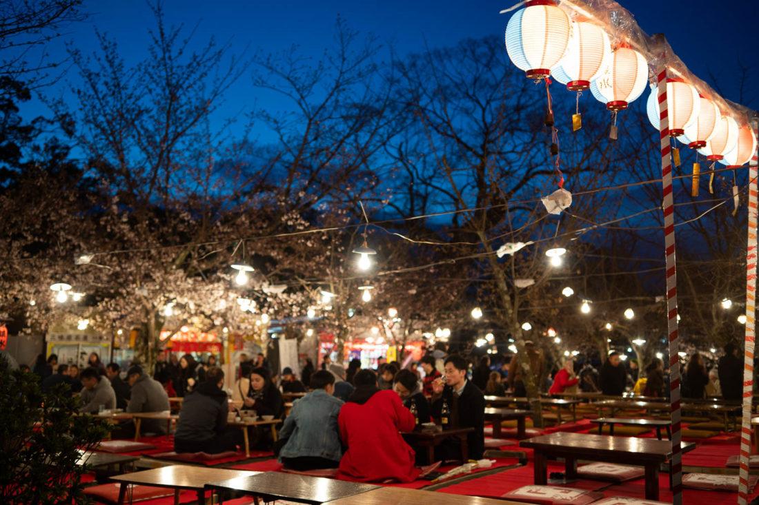 Hanami pique-nique la nuit au parc Maruyama à Kyoto