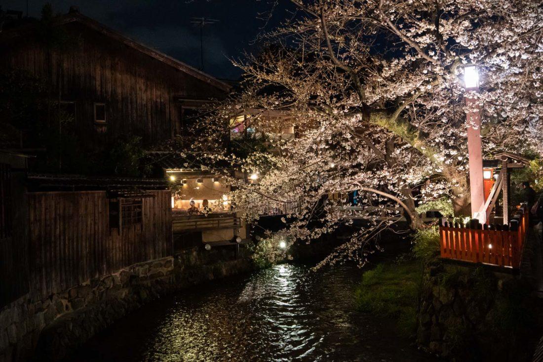 Restaurants de nuit le long du canal Shirakawa à Gion, Kyoto pendant la saison des sakura