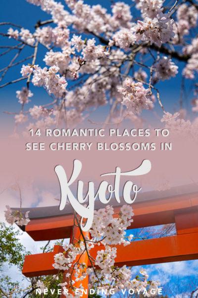 Voici les meilleurs endroits à visiter à Kyoto pour les fleurs de cerisier!