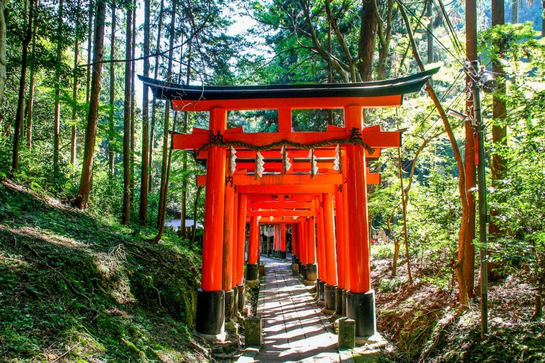 Fushimi Inari, le meilleur sanctuaire de Kyoto
