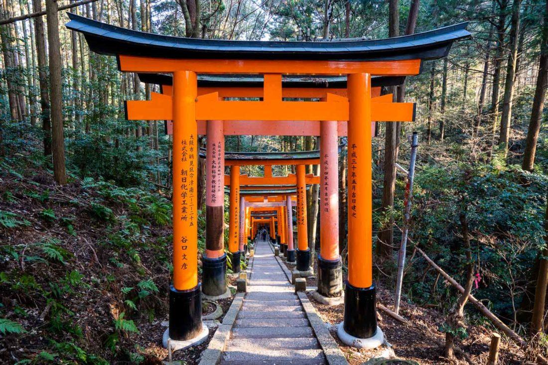 La partie supérieure du sanctuaire Fushimi Inari à Kyoto à travers la forêt