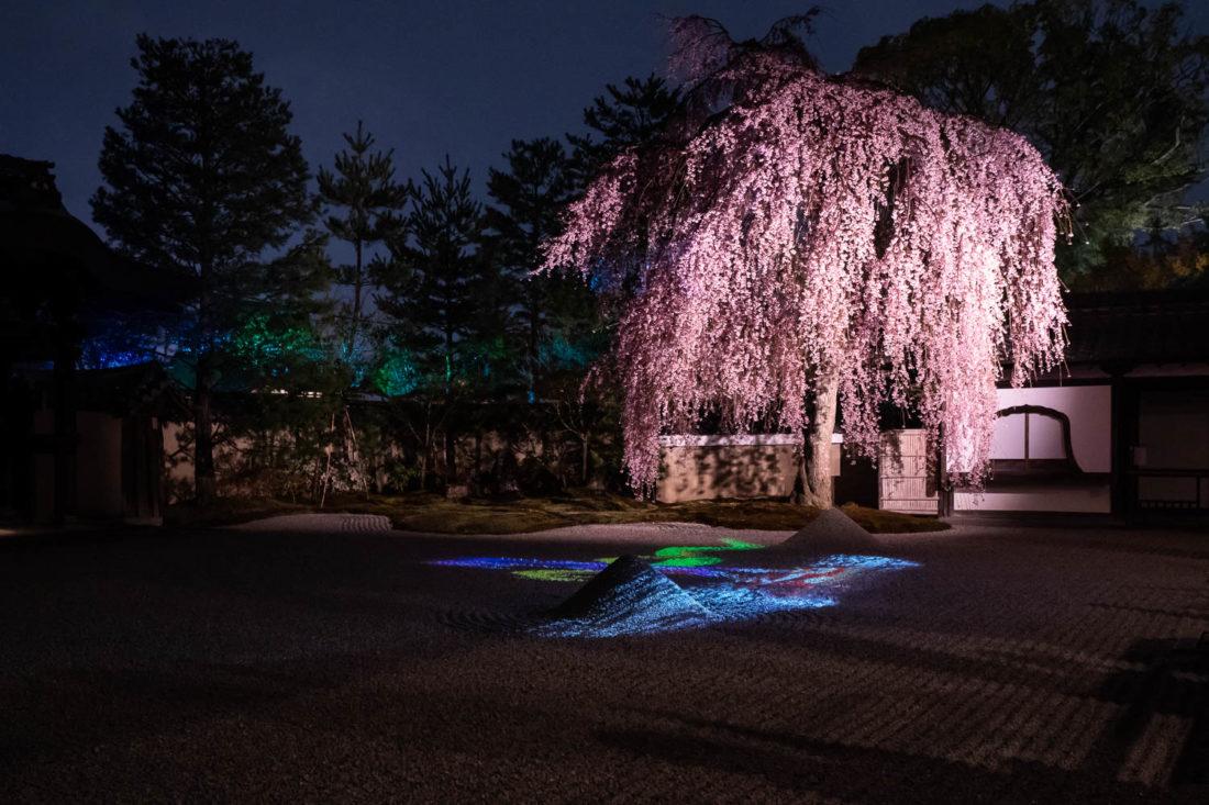 Le jardin de pierres à Kodaiji pendant les illuminations nocturnes d'avril