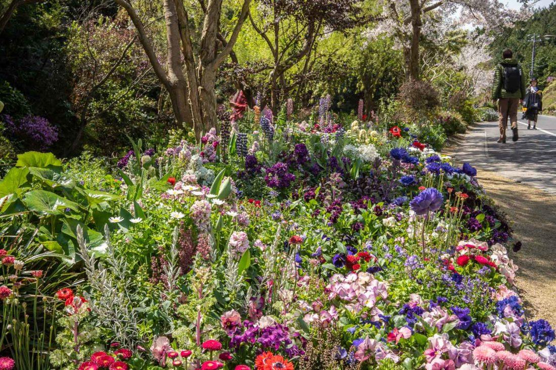 Allée du jardin Monet menant au musée d'art Chichu sur l'île de Naoshima