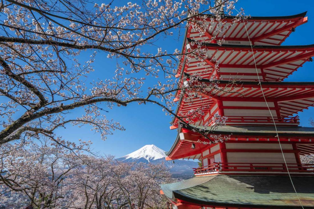 Mont Fuji et fleurs de cerisier à la pagode Chureito à Arakurayama Sengen Park près de Kawaguchiko