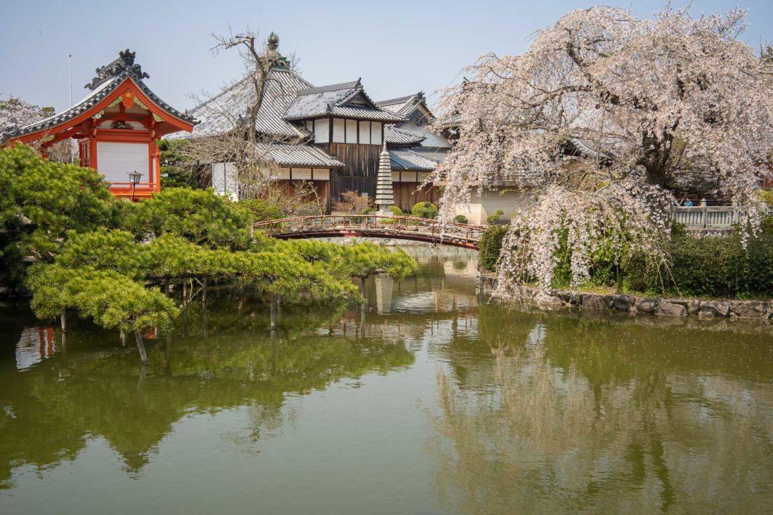 """Étang au sanctuaire de Kibitsu près d'Okayama """"width ="""" 1100 """"height ="""" 733"""