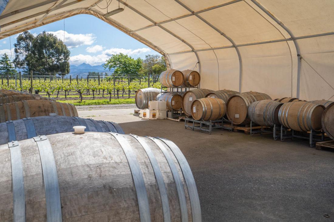 Tonneaux de vin et vignoble à Te Whare Ra Winery à Marlborough