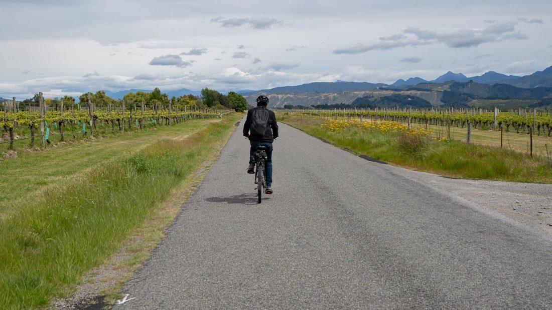 Faire du vélo à travers les vignobles de Marlborough, Nouvelle-Zélande