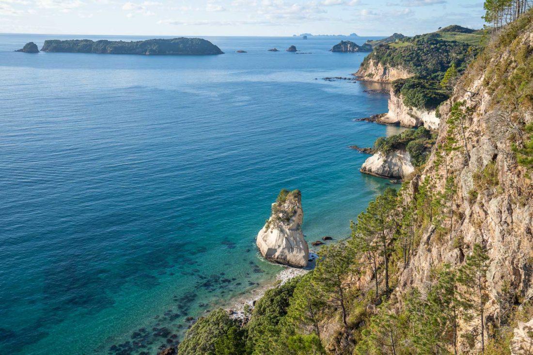 Vue sur la côte depuis le sentier Cathedral Cove Lookout dans la péninsule de Coromandel en Nouvelle-Zélande