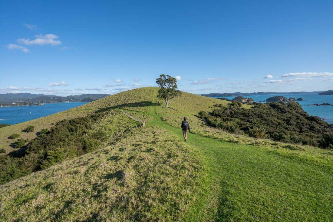 Le sentier de la boucle de Cable Bay sur l'île d'Urupukapuka