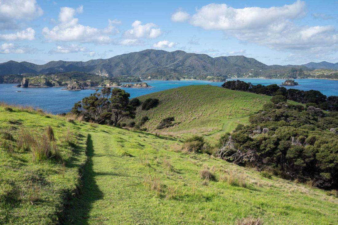 Vues sur la piste de randonnée Pateke Loop sur l'île d'Urupukapuka