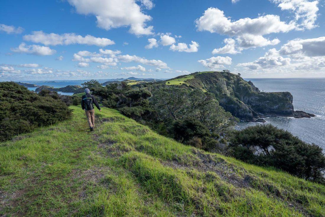 Randonnée sur le sentier Pateke Loop sur l'île d'Urupukapuka