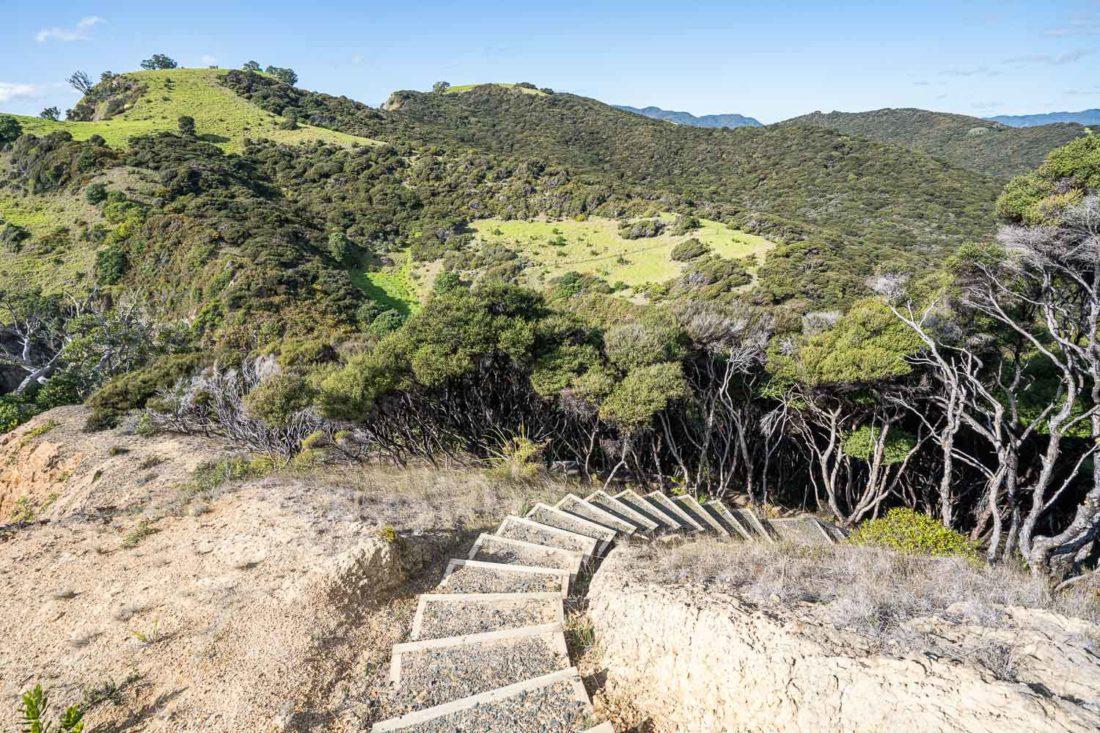 Intensifie le sentier Cliff Pa Loop sur l'île d'Urupukapuka