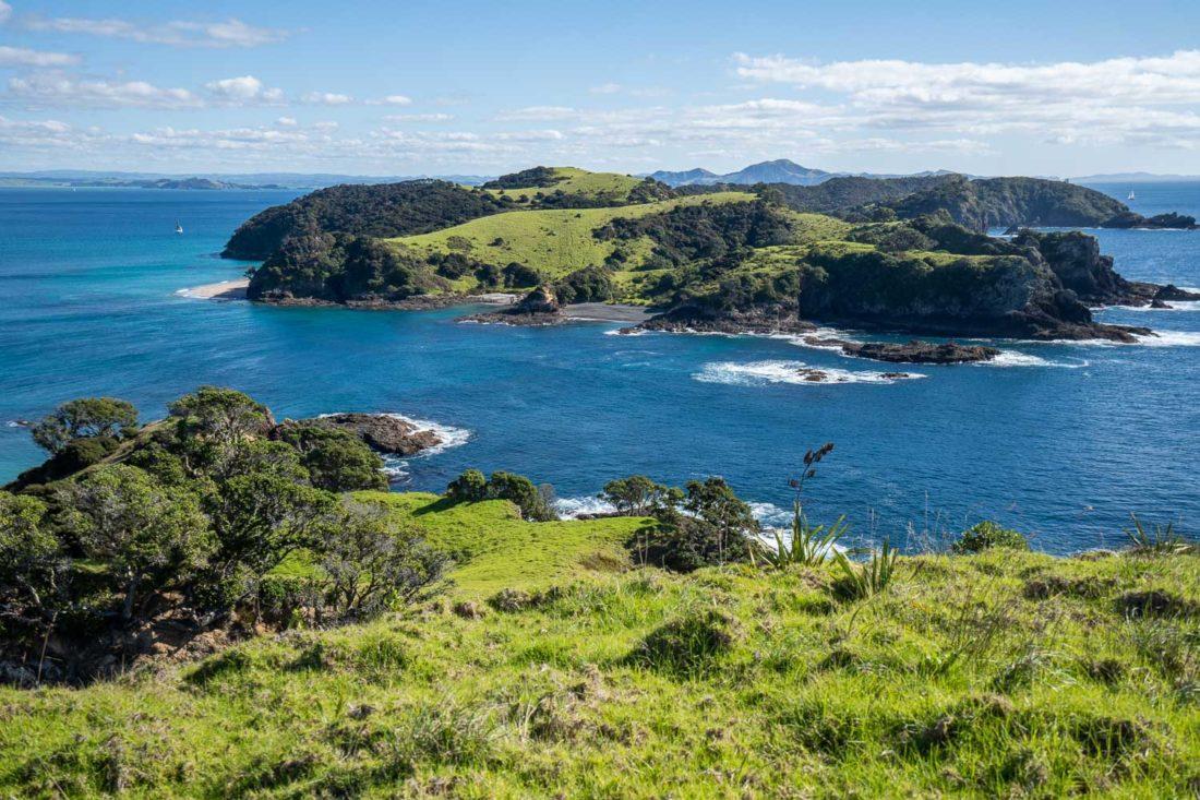Vue de l'île de Waewaetorea depuis la boucle de la falaise de l'île Urupukapuka Pa