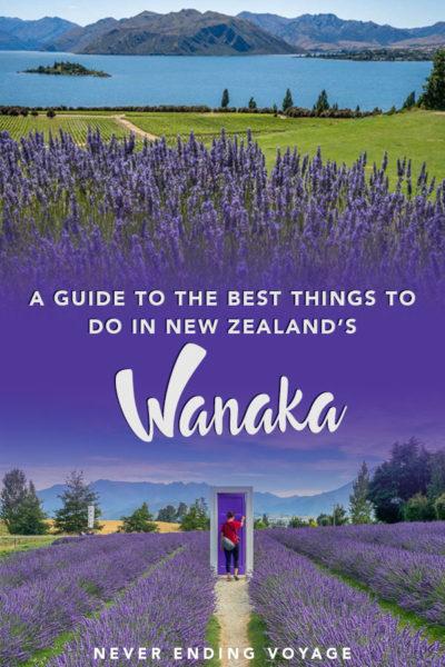 Un guide de toutes les meilleures choses à faire à Wanaka, en Nouvelle-Zélande! | wanaka nouvelle zélande, arbre wanaka, lac wanaka, ferme de lavande wanaka